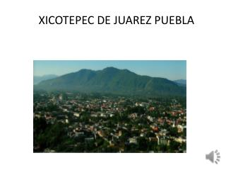 XICOTEPEC DE JUAREZ PUEBLA
