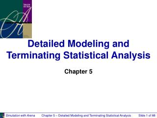 Detailed Modeling and Terminating Statistical Analysis