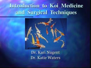 Introduction  to  Koi  Medicine  and  Surgical  Techniques