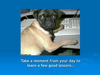 Take a moment from your day to learn a few good lessons�