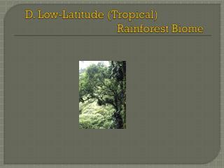 D. Low-Latitude (Tropical) Rainforest Biome
