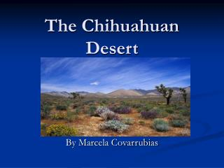 The Chihuahuan Desert