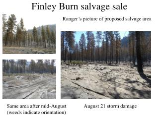 Finley Burn salvage sale