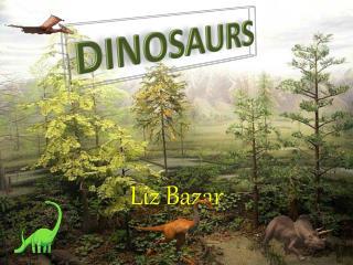 Liz  Bazar