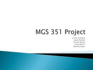 MGS 351 Project