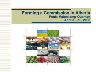 Forming a Commission in Alberta Freda Molenkamp-Oudman April 8   10, 2008