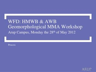 WFD: HMWB & AWB Geomorphological MMA Workshop Arup Campus, Monday the 28 th  of May 2012