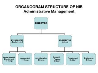 ORGANOGRAM STRUCTURE OF NIB Administrative Management