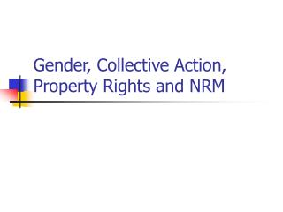 Gender, Collective Action, Property Rights and NRM