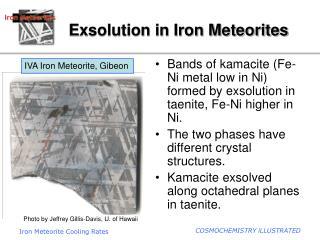 Exsolution in Iron Meteorites