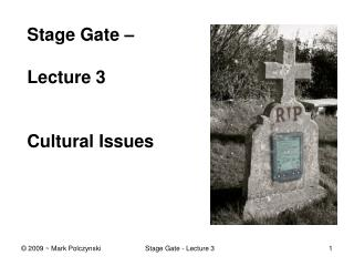 Stage Gate    Lecture 3   Cultural Issues