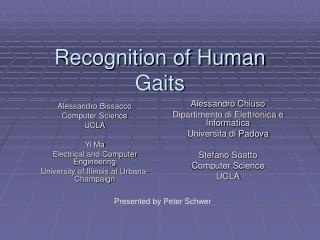 Recognition of Human Gaits