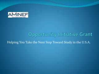 Opportunity Initiative Grant