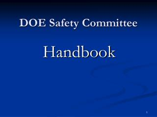 DOE Safety Committee