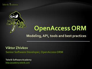OpenAccess ORM