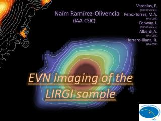 EVN imaging of the LIRGI sample