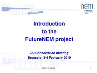 Introduction  to the FutureNEM project D2 Concertation meeting  Brussels- 3-4 February 2010