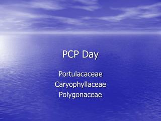 PCP Day