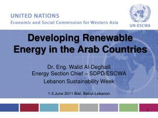 Developing Renewable Energy in the Arab Countries