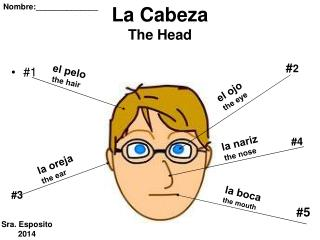 La Cabeza The Head