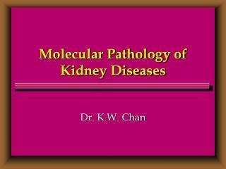 Molecular Pathology of Kidney Diseases