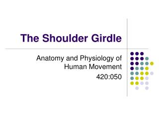The Shoulder Girdle