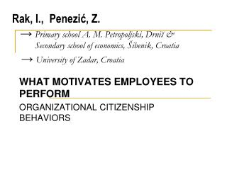 WHAT MOTIVATES EMPLOYEES TO PERFORM ORGANIZATIONAL CITIZENSHIP BEHAVIORS