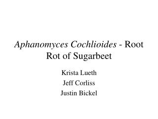 Aphanomyces Cochlioides  - Root Rot of Sugarbeet