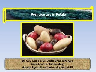 Pesticide use in Potato