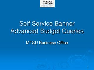 Self Service Banner Advanced Budget Queries