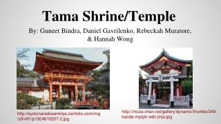 Tama Shrine/Temple