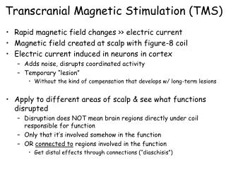 Transcranial Magnetic Stimulation (TMS)