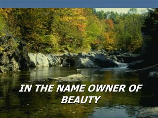 IN THE NAME OWNER OF BEAUTY