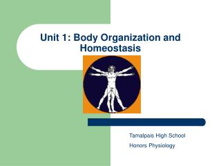 Unit 1: Body Organization and Homeostasis