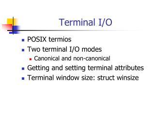 Terminal I/O