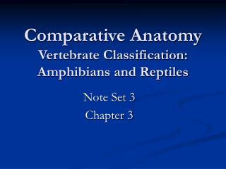 Comparative Anatomy Vertebrate Classification: Amphibians and Reptiles