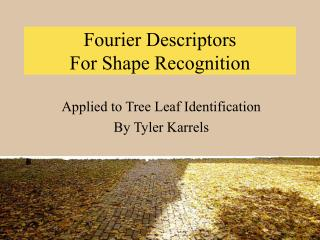 Fourier Descriptors  For Shape Recognition