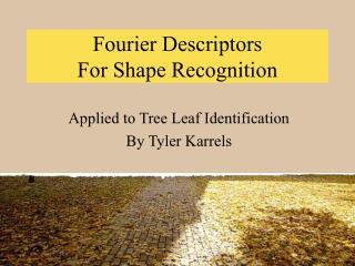 Fourier Descriptors  For Shape Recognition