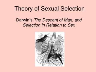 Theory of Sexual Selection