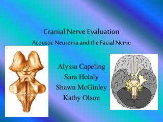 Cranial Nerve Evaluation Acoustic Neuroma and the Facial Nerve