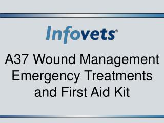 A37 Wound Management Emergency Treatments and First Aid Kit