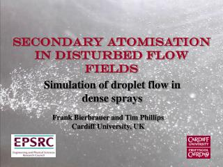 Secondary Atomisation in Disturbed Flow Fields