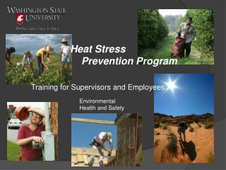 Heat Stress      Prevention Program