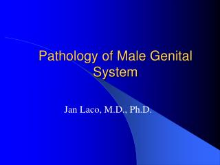 Pathology of Male Genital System
