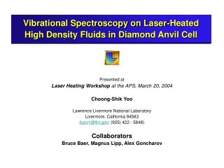Vibrational Spectroscopy on Laser-Heated High Density Fluids in Diamond Anvil Cell