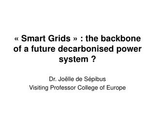 « Smart Grids » : the backbone of a future decarbonised power system ?