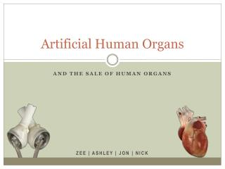 Artificial Human Organs