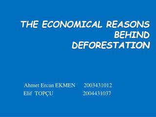 THE ECONOMICAL REASONS  BEHIND  DEFORESTATION