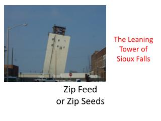 Zip Feed or Zip Seeds