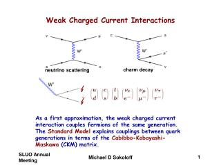 Weak Charged Current Interactions